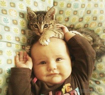 Вот почему каждому ребёнку нужен кот