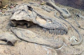 Топ-10 великих археологических открытий