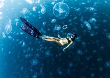 Прогулки под водой: бесстрашные фридайверы в окружении тысяч медуз