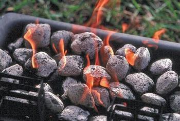 Какой уголь выбрать для шашлыка?