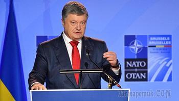 """""""Все ушли на обед"""". В Сети обсуждают выступление Порошенко в пустом зале НАТО"""