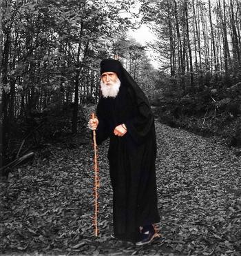 До конца века не иссякнут святые. Чудеса старца Паисия Святогорца