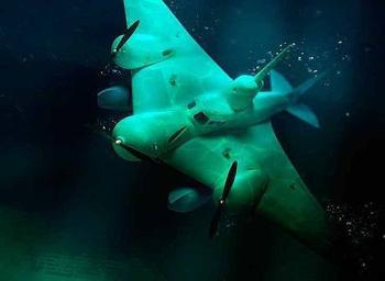 Советская летающая подводная лодка