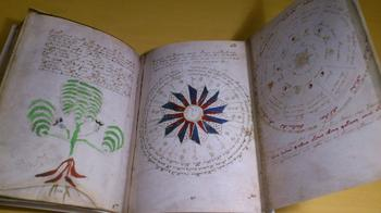 Рукопись Войнича: возможно, ученым удалось найти ключ к разгадке манускрипта