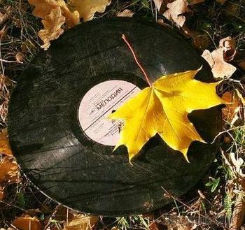 Смакуя терпкость октября... (Стих)