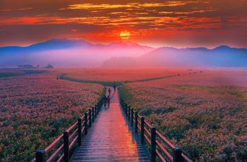 Страна утренней свежести: обворожительная, потрясающая, неземная Южная Корея