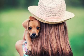 Как научить ребенка правильно обращаться с животными