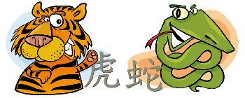 Змея и Тигр: совместимость двух противоположностей