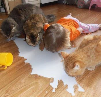 20 смешных детей, которые считают себя животными