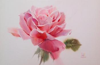 Чудесные акварельные розы от таиландского художника La Fe