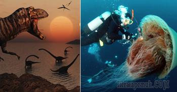 15 самых невероятных созданий природы