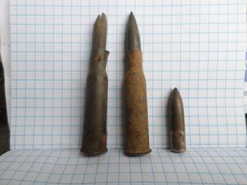Деревянные и резиновые пули: На что годные такие боеприпасы