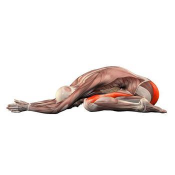 Упражнения, которые дают максимальный оздоровительный и омолаживающий эффект