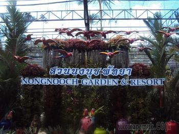 Паттайя. Тропический  сад Нонг Нуч. (часть первая)