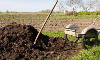 """10 важных вопросов о натуральных удобрениях или Огород без """"химии"""""""