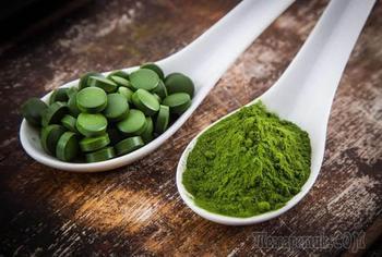 Хлорелла — 10 фактов о самой полезной водоросли на планете