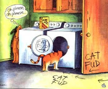 «Настоящие коты»  Т.Пратчетта. Завершающая часть