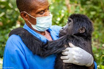 Победители конкурса Africa Geographic 2020