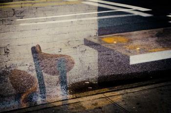 «Городские впечатления»: импрессионизм в фотографии Педро Корреа