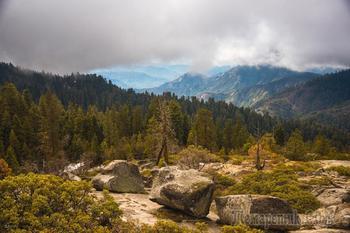 Национальный парк «Секвойя» в Калифорнии в фотографиях