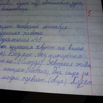 Смешные записи из школьных тетрадей. Чистый позитив