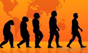 7 доказательств в пользу того, что человек все еще эволюционирует