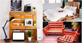 Идеи, которые помогут превратить невзрачные поддоны в красивые вещи для дома и сада