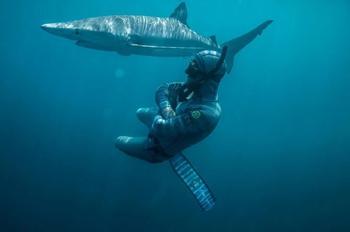Улыбка смерти: как бесстрашный дайвер контактирует с акулами