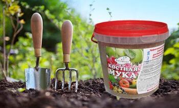 Как применять костную муку в качестве удобрения и в чем ее польза для растений