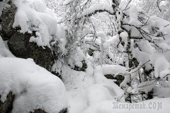 Два дня после рождества. 9-е января. Крым. 1. Ангарский перевал - Эльх-Кая - Пакхал-Кая