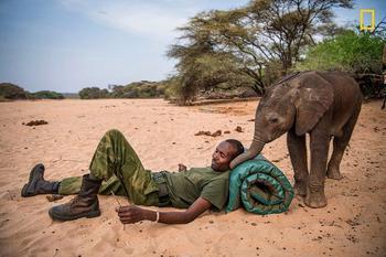 Кения: слоновий приют