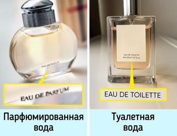 Как выбрать духи, которые будут пахнуть так, будто стоят бешеных денег