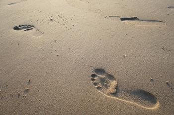 Ученые обнаружили связь между размером ноги и продолжительностью жизни