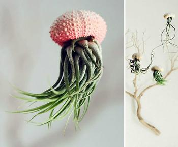 19 фантастических цветочных горшков, которые поражают своим необыкновенным дизайном