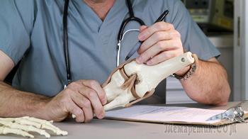 Рак костей – симптомы, признаки, стадии, диагностика и лечение