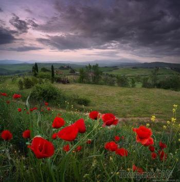 Тоскана весной, фотоочерк