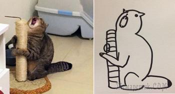 Когда тебе говорят, что ты не умеешь рисовать котиков, но твои рисунки гиперреалистичные