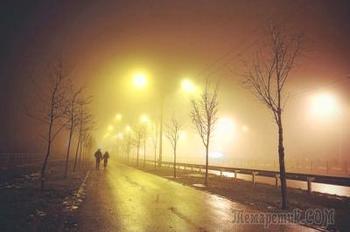 Туман-обман..