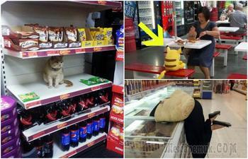 Колоритные посетители супермаркетов, мимо которых невозможно пройти равнодушно
