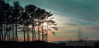 Приезжайте к нам, в Саулкрасты - райский уголок на балтийском взморье