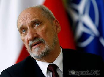 В Польше раскрыли «газовый сговор» России и Германии