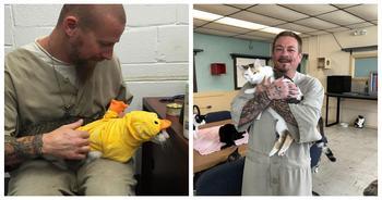 Зэки и котаны: в Штатах запустили новую программу реабилитации заключенных