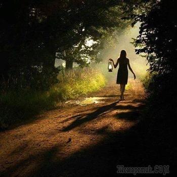 К новому любви восходу...