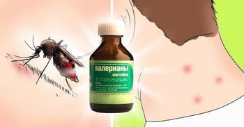 Народное средство от комаров