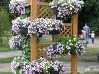 Как сделать красивые кашпо для цветов для сада, дачи