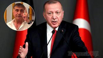 «Он раскрывает их преступные схемы»: мафиози разоблачает окружение Эрдогана