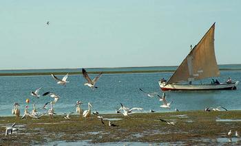 Мавритания: достопримечательности и популярные места