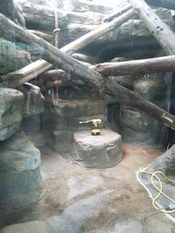 17 смешных случаев, когда поход в зоопарк не оправдал ожидания
