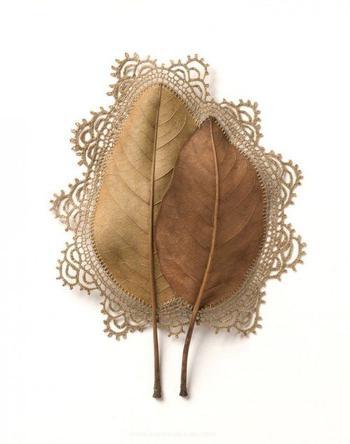 Новая жизнь опавших листьев