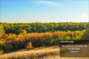 Фотопрогулки.        Золотая осень на Покрову часть 2